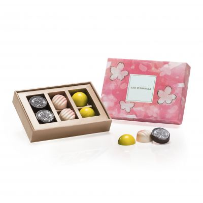 Artisanal Chocolates – 6 pieces