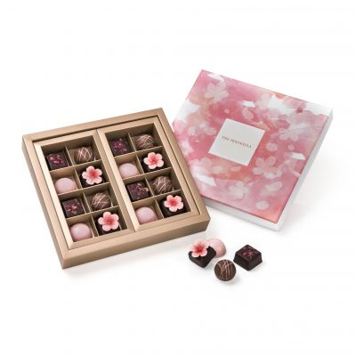 Assorted Truffles and Pralines – 16 Pieces